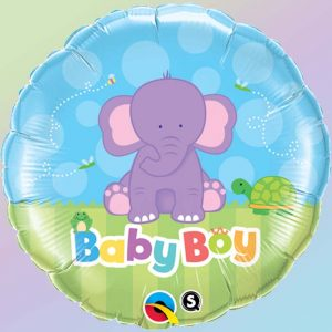 18 Baby Boy Elephant