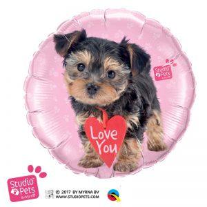 "M18"" 55232 Studio Pets - Love You Terrier *1b"