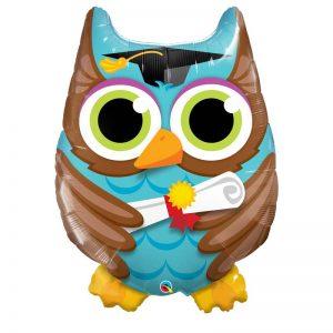 "M34"" 55863 Graduate Owl *1b"