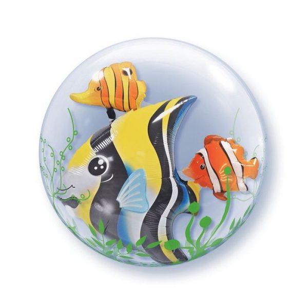 24 Seaweed Tropical Fish