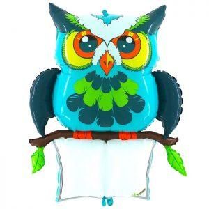 Ballon Aluminium 47″ B-Pad Lucky Owl – Grabo