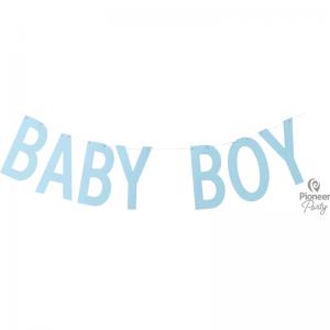 Banner Baby Boy Blue